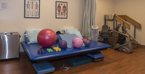 Exercise and Physical Therapy